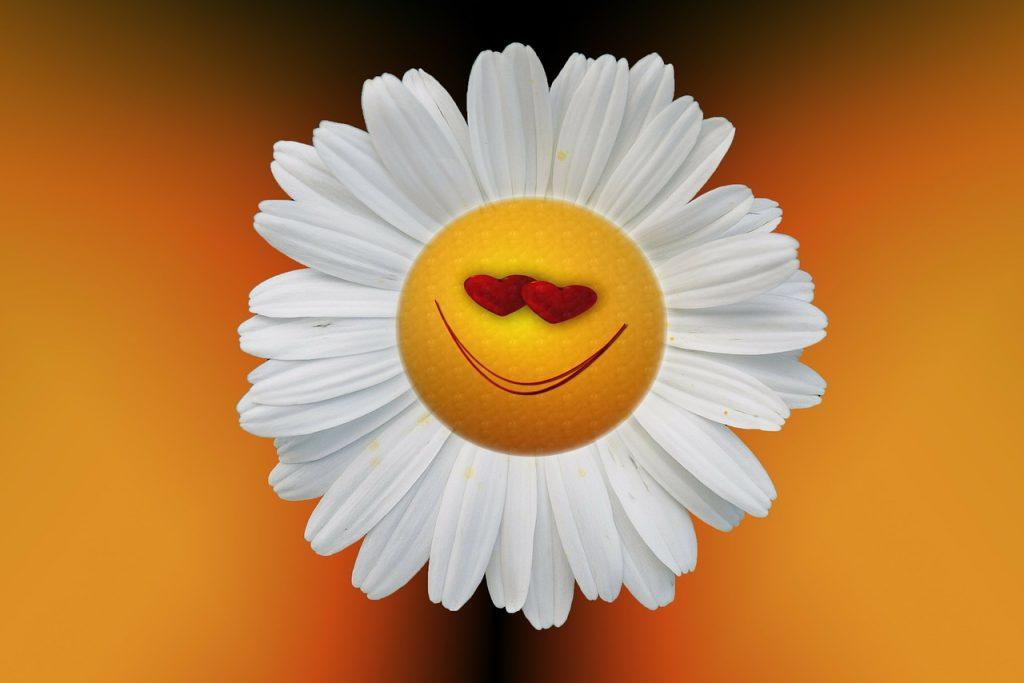joie, positive